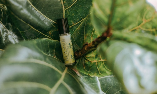 4 Interesting Ways for Buying the Best CBD Products Online